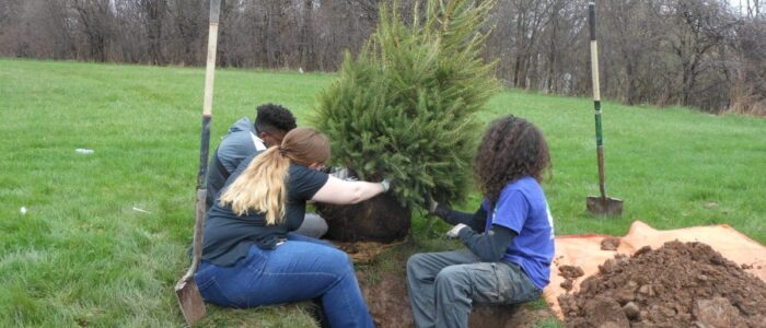 Youth planting trees.